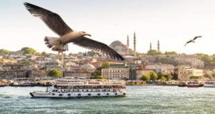 Стамбул. Минигид по бывшей турецкой столице 13