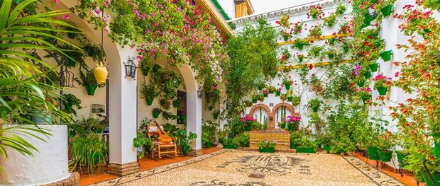 Испания в цвету 23