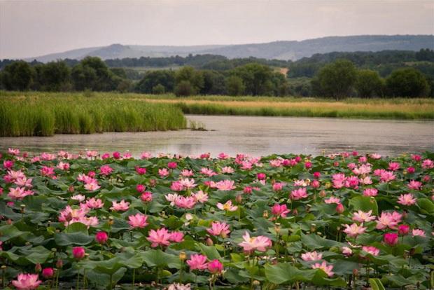 Топ самых красивых озер России 14