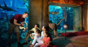 Семейный отдых в Дубае – учиться, совершать открытия, исследовать и развиваться 10
