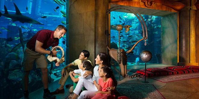 Семейный отдых в Дубае – учиться, совершать открытия, исследовать и развиваться 1