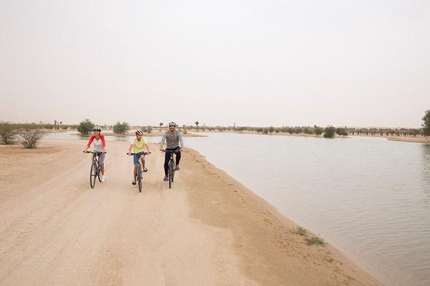 Семейный отдых в Дубае – учиться, совершать открытия, исследовать и развиваться 7