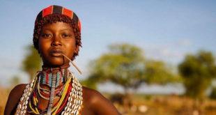 Петербургским турпрофи расскажут про Африку всё 11