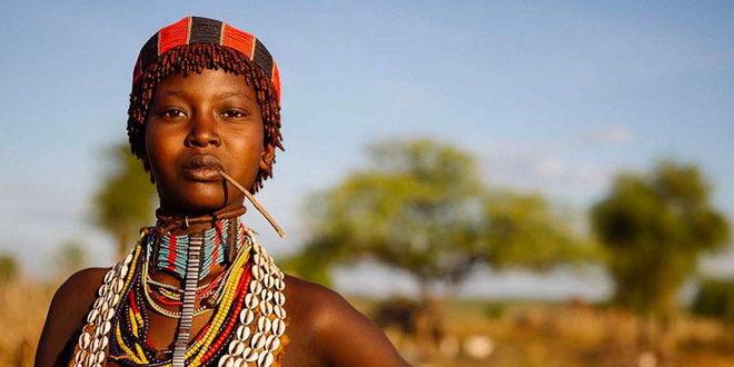 Петербургским турпрофи расскажут про Африку всё 1