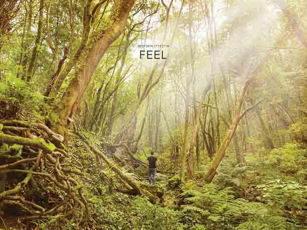 Канарские острова: рассветы других миров - FEEL (Ла Гомера)