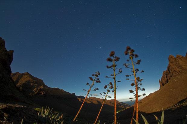 Астротуризм на Канарских островах
