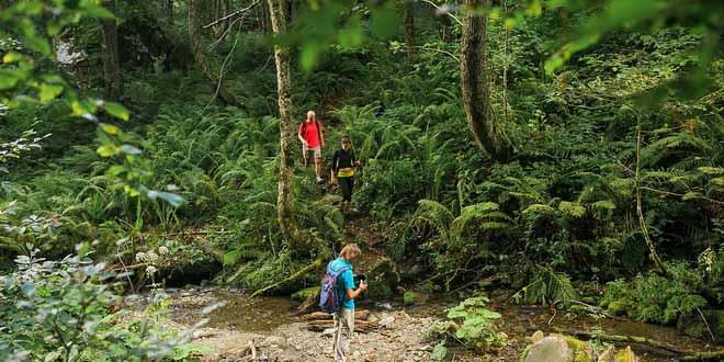 Новые экомаршруты появятся в горах Красной Поляны 1