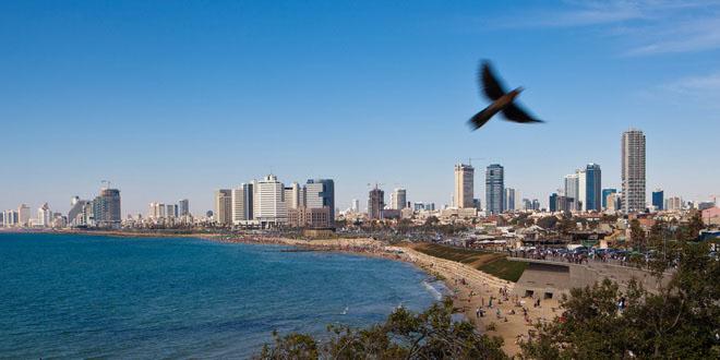 До 81 самолета в неделю будет летать зимой из России в Израиль 1