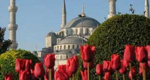 В Стамбуле открылся ежегодный фестиваль тюльпанов
