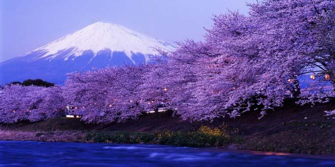 В Санкт-Петербурге пройдет День Японии