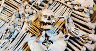 Уважайте черепушки! В костнице Кутна-Горы запретят фотографировать 3