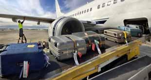 Пулково разъяснил порядок получения багажа пассажирами, прибывающими из Египта