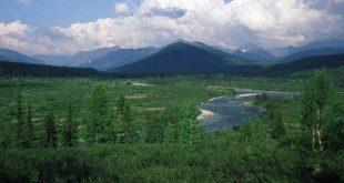 В списке ЮНЕСКО: леса Коми,Ярославль и Куршская коса 15