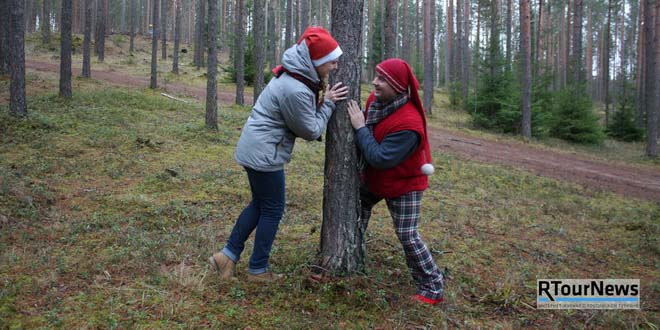 Центр спорта и отдыха Алутагузе в Эстонии заняли рождественские гномы
