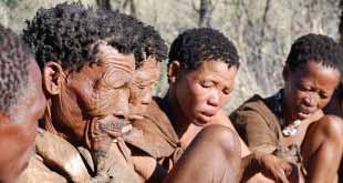 Ростуризм просит турфирмы предупреждать туристов об африканских паразитах