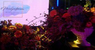 #Ноябрьфест стал лучшим гастрономическим событием России 16