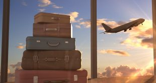 В Сочи за ₽100 тыс. или в Дубай за 500?Самые дорогие заказы авиабилетов на новогодние праздники 6