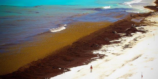Карибский пляжный туризм под вопросом