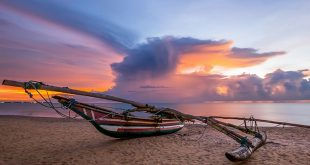 Ростуризм благословил туррынок на продажи Шри-Ланки 15