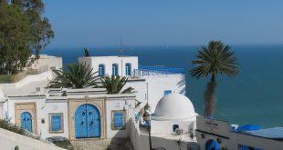 Тунис круглый год! 1