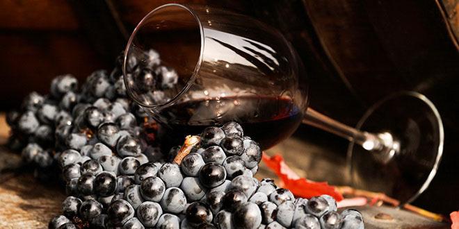Как выбрать вино в подарок к Новому году? 3